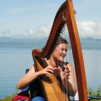 Harp, Celtic, Ireland, instrument, music, busking