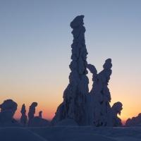 Finland, lapland, snow, snowscape