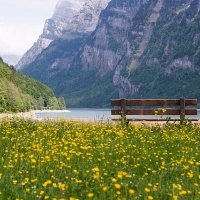 Bench on a Suisse mountain lake