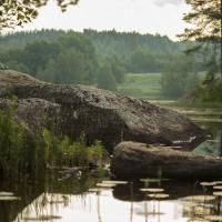 landscape, nature